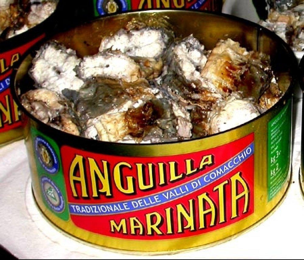 anguilla_marinata_large